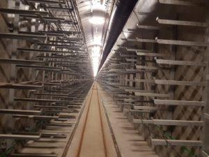 kolektor u hlávkova mostu