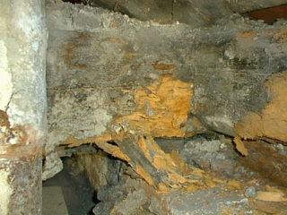 střešní konstrukce poničená dřevokaznou plísní