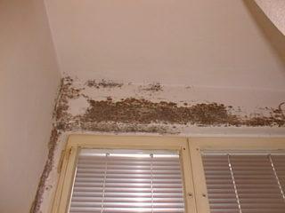 plíseň v bytě nad okenním rámem